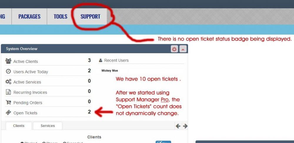 support_manager_pro_dashboard_screenshot.jpg